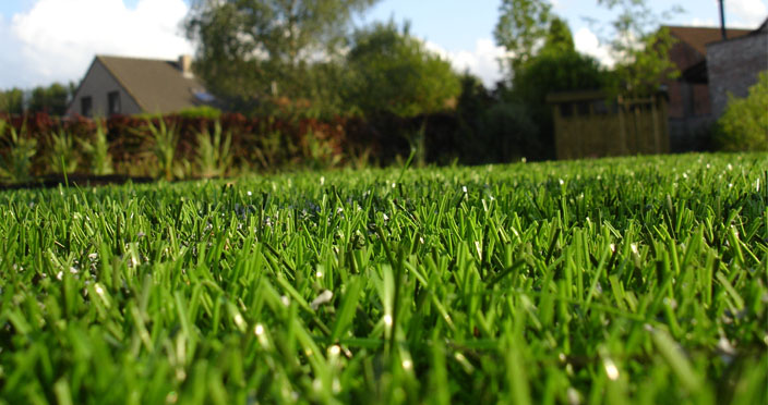 Artificial grass is less costly to maintain than their real counterparts.