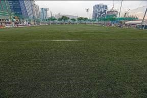 The high-quality and world-class artificial grass of Turf BGC.