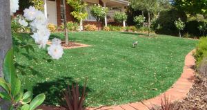 A lawn installed with Limonta's artificial turf.